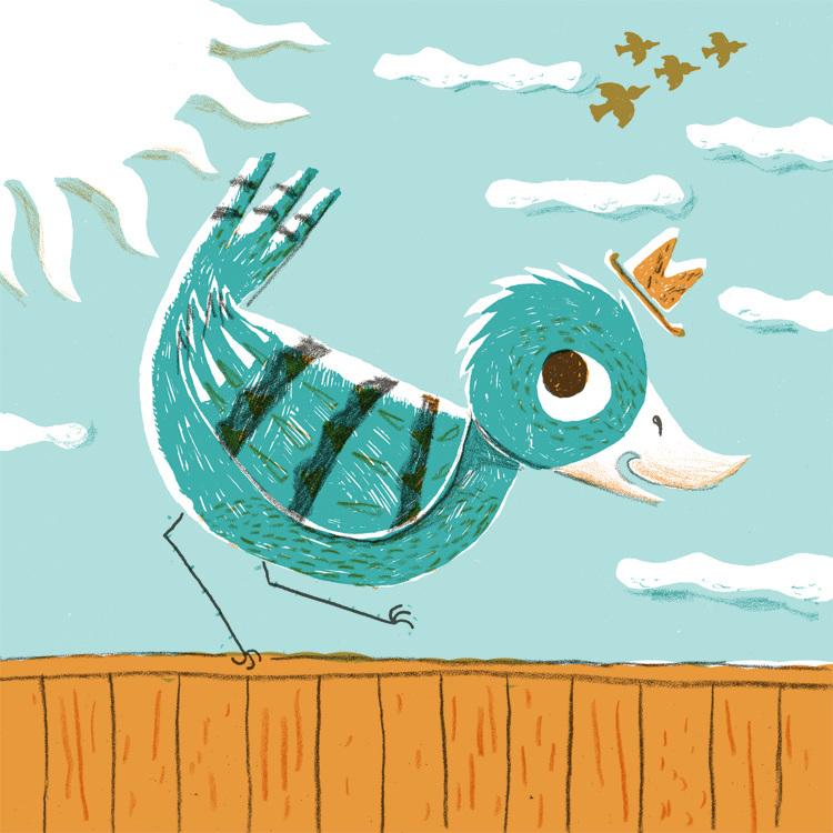 BirdOnFence_Toby-Rampton_750